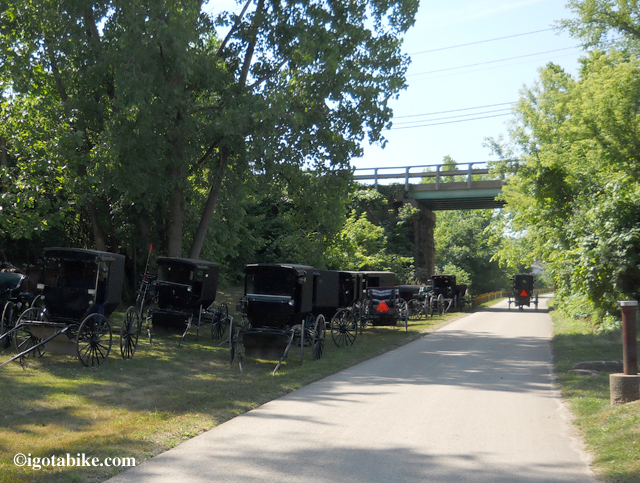 Amish buggies on The Holmes County Trail on Auction Day